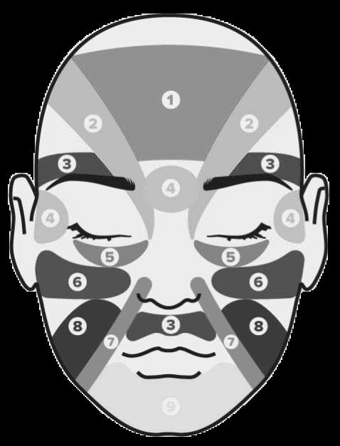 אבחנת פנים איזורי פנים